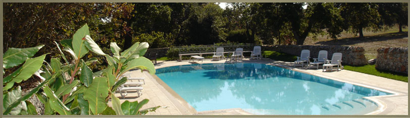 Agriturismo puglia con piscina della masseria selvaggi piscina a sfioro con acqua salata - Masseria in puglia con piscina ...